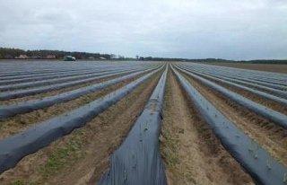Combattre l'exploitation de la main d'oeuvre dans l'agriculture : rompre le silence (1/3)